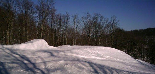 Ski Brule 50 footer