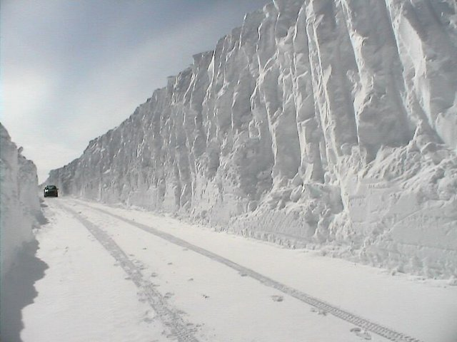 this is the actual highway pictures from Newfoudland-Labrador ... NOT NY