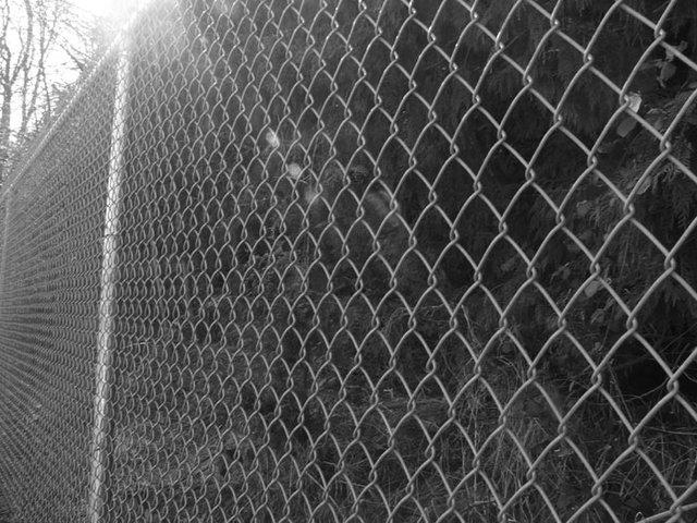 i hope you like fences