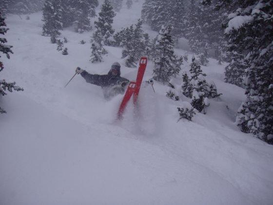 POWDER skiing  has no laws.....