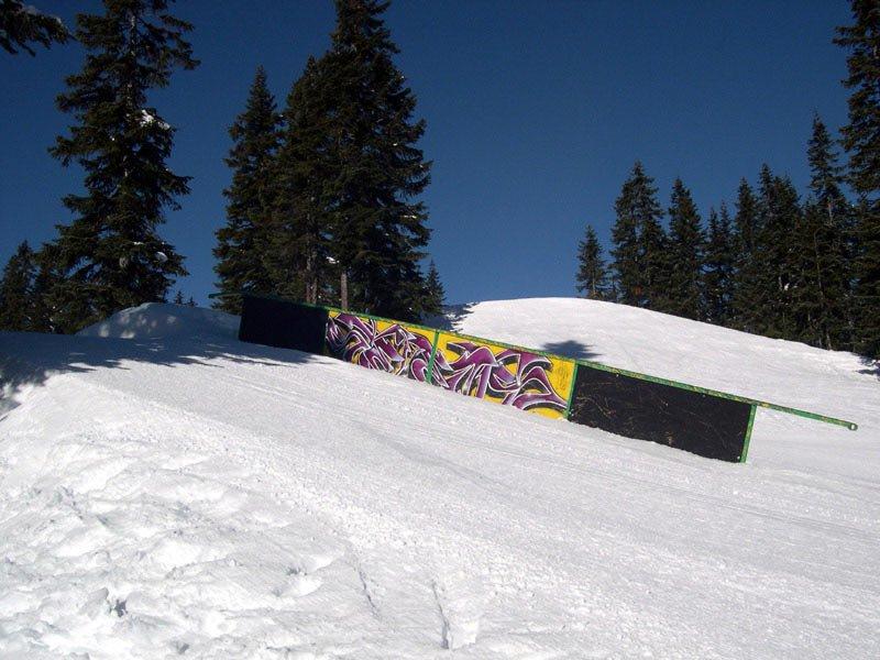 40 foot rail
