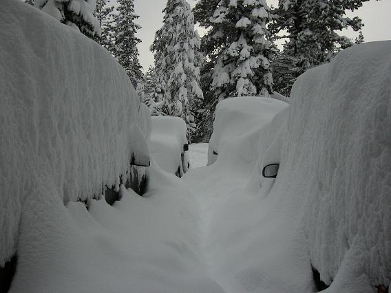it snowed last night