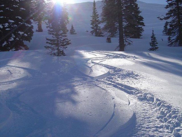 Light Utah fresh trax mid February