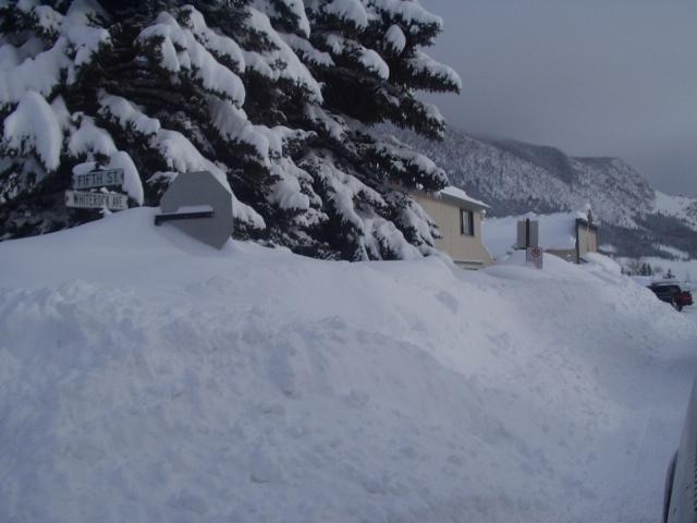 winter break '04/'05....stop sign