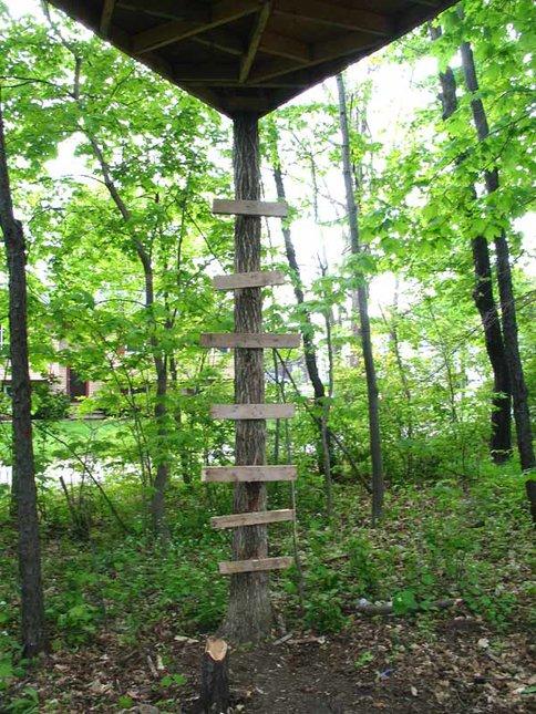 tree fort 2