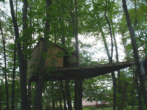 tree fort 3