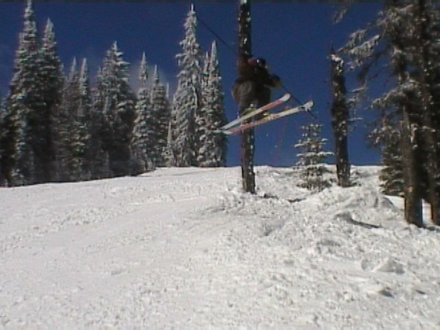 sketchy 180 out of the tree's