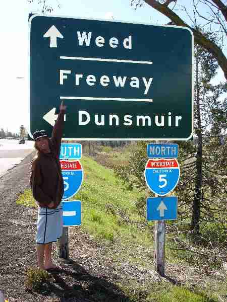 Going to WEED