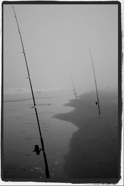 foggy fishing day
