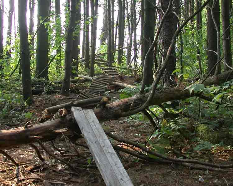 freeride trail