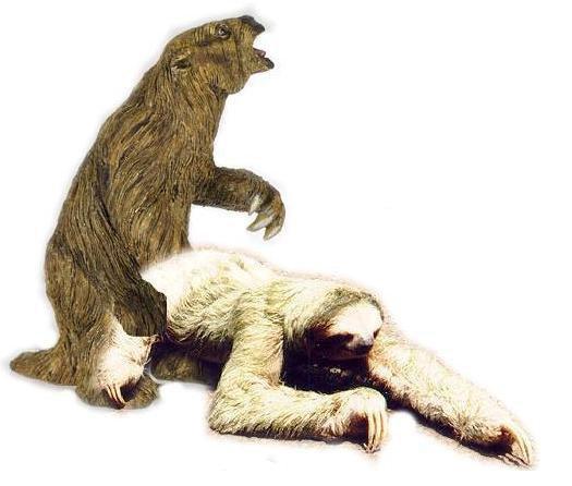 Sloth Fornication
