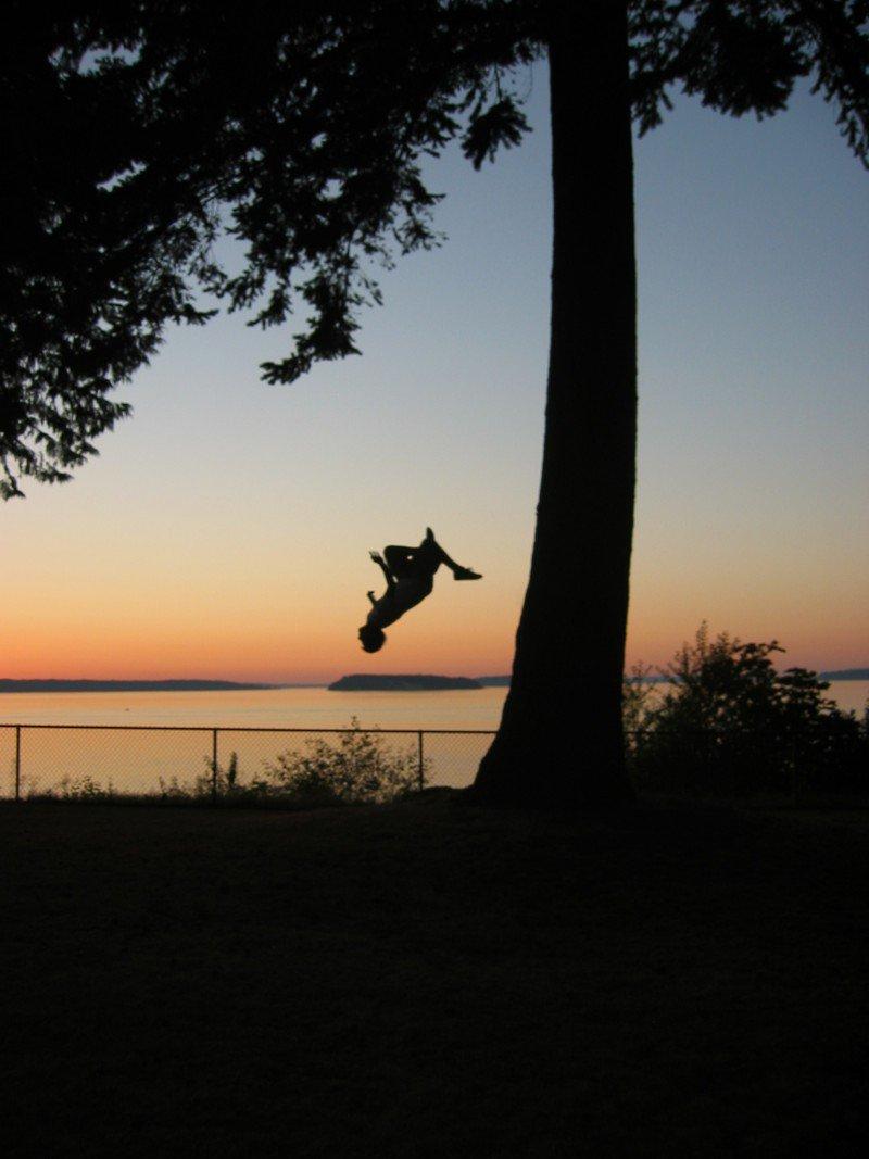 Backflip Off Mighty Tree