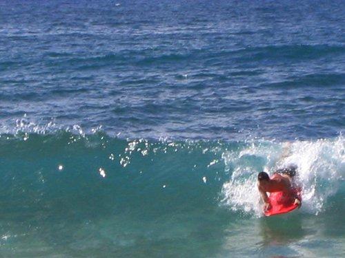 summer swell....meh