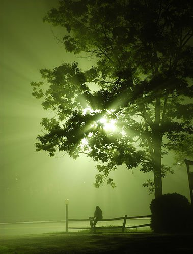 Street Lamp and Fog