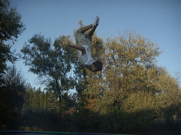 layed out backflip on a traploline