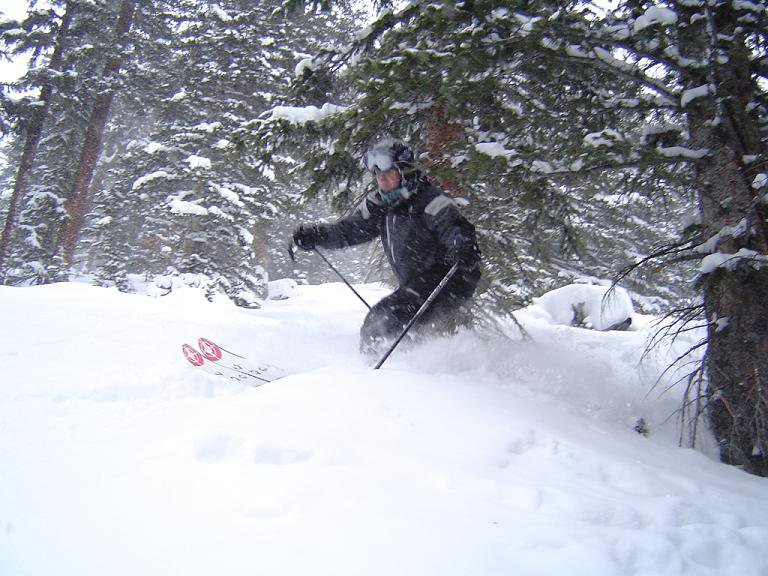 nice pow in some sick trees