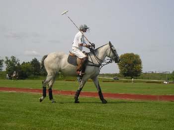 the wife jamie playing polo