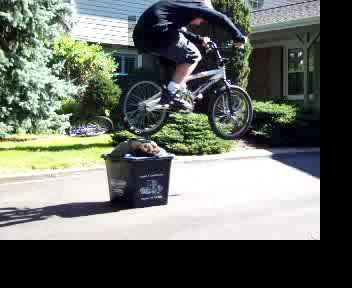 bunny hop over a kid in a box