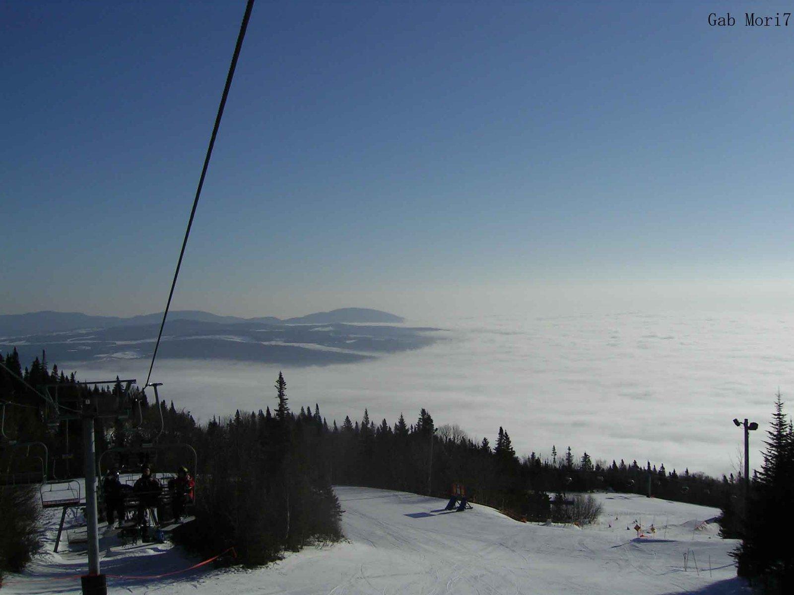 View at top of msa