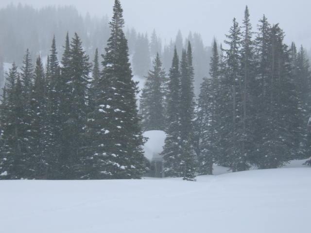 04-05 season, overnight snow on a cabin roof