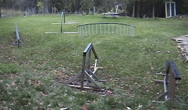 Backyard park 3