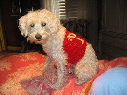 crochett...for peanut...the dog