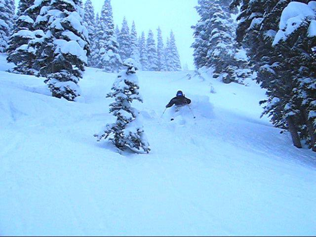 Skiing Powder in Northback
