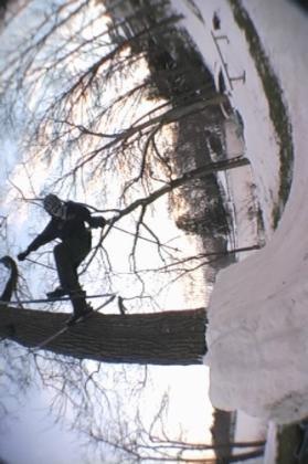 one footed slide on tree