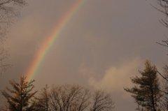 Huge Rainbow in my backyard