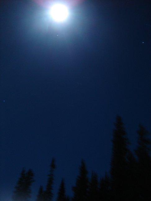 Moon of my nights