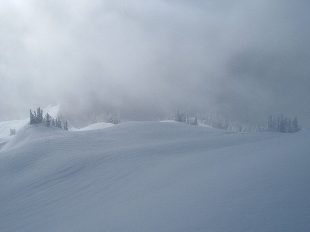 Endless and Deep Powder