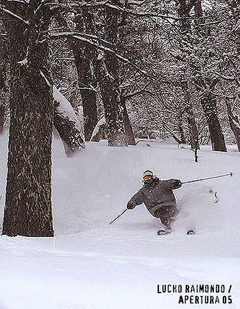 argentinian skier (powder)