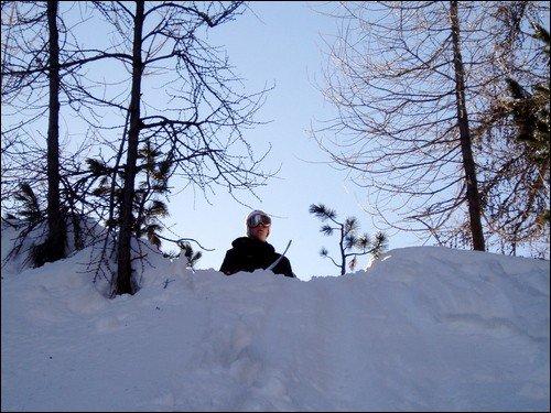 forest shot