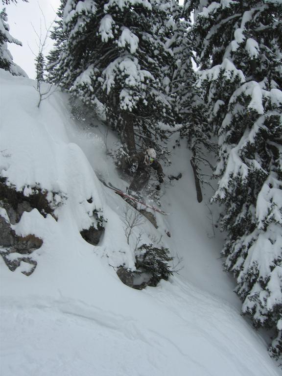 cliffdrop in forest