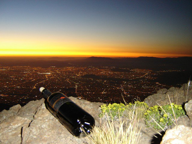 wine & city lights