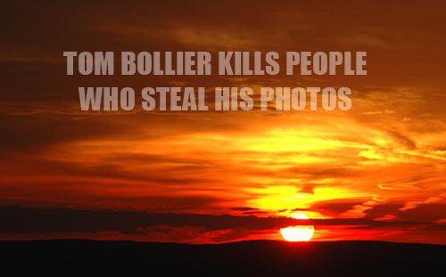 Dont steal photos