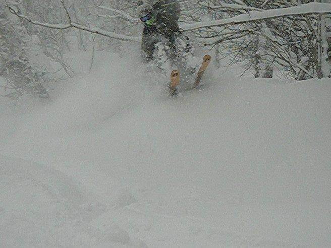 japan powderrrr