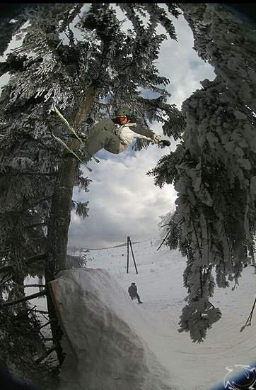 Tree ride