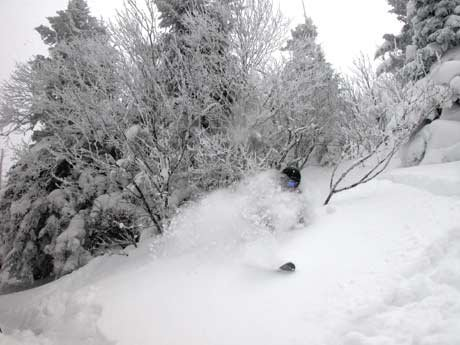 another powder day at jay peak