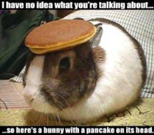 bunny boober
