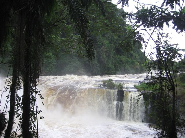 Scenery from my trip to Gabon