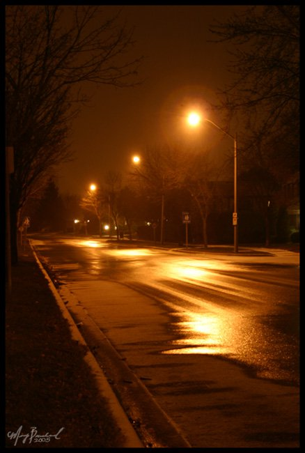 Light in the Dark