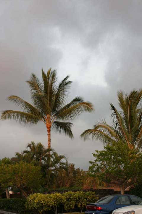 rainy day in hawaii