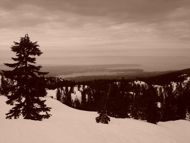 mount seymour view