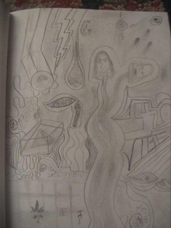 wild drawing