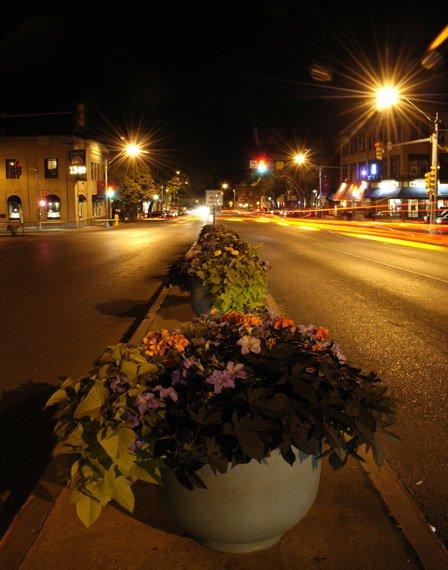 Flower Pots at Night
