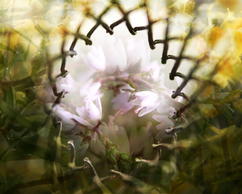 Flowerstuff