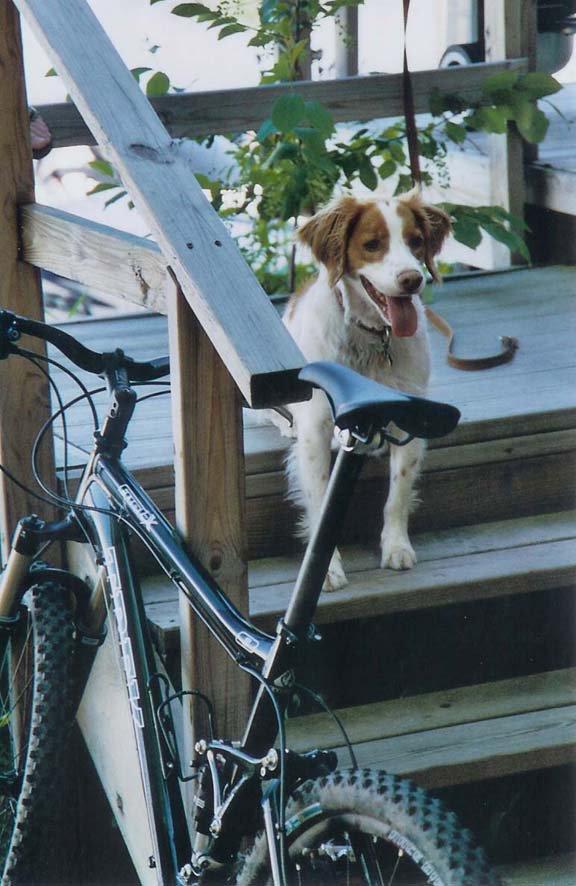 My dog and my bros bike