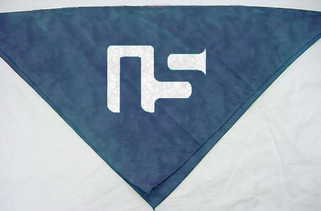 Matching ns bandana
