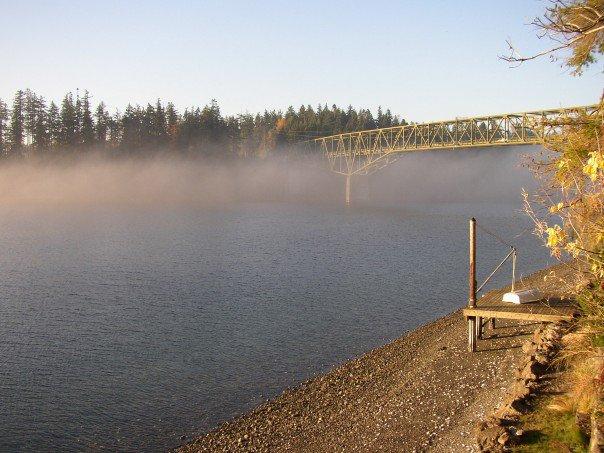 Bridge fog